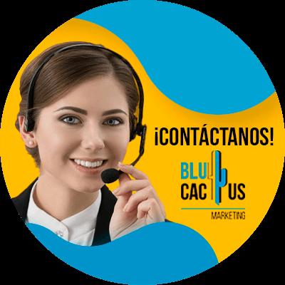 BluCactus - caracteres para tu blog - contacto