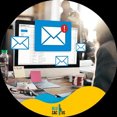 Blucactus - 6. Incluir enlaces relevantes - consejos de email marketing