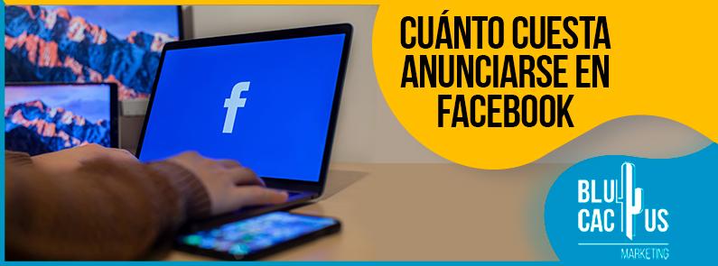 BluCactus - anunciarse en Facebook