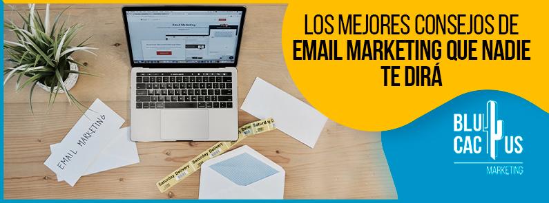 Blucactus -Los mejores consejos de email marketing que nadie te dirá
