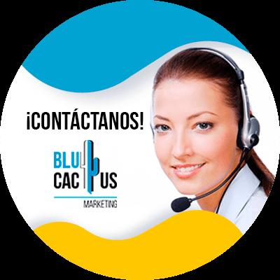 BluCactus - publicar en Tik Tok