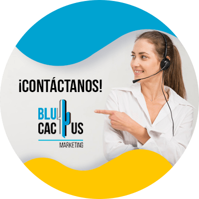 BluCactus - CDN - contactanos