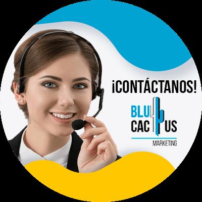 BluCactus - ¿Qué es Reddit y en qué consiste esta plataforma?