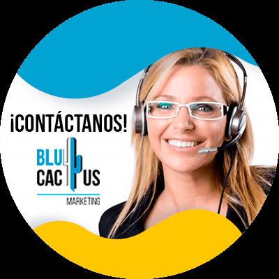 Blucactus-contactanos
