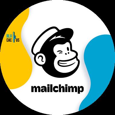 Blucactus-5-MailChimp
