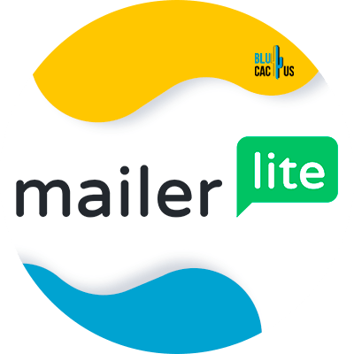 Blucactus-8-MailerLite - Herramientas de email marketing