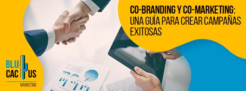 BluCactus - Co-branding