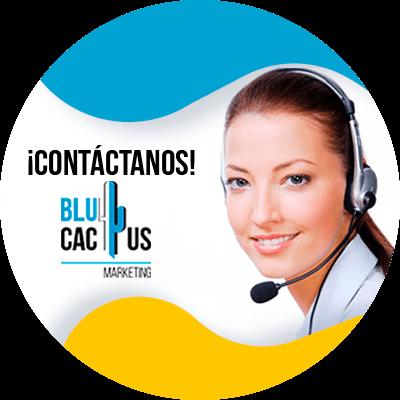 BluCactus - ¿Cuánto cuesta un sitio web para un restaurante?