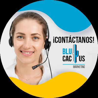 BluCactus - estrategias de marketing internacional